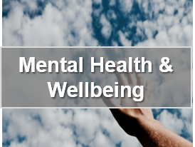 health and wellbeing -  business webinar